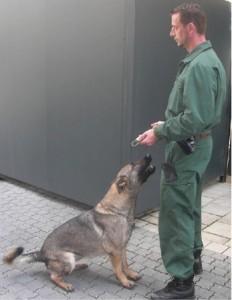 Tiere helfen menschen polizeihund